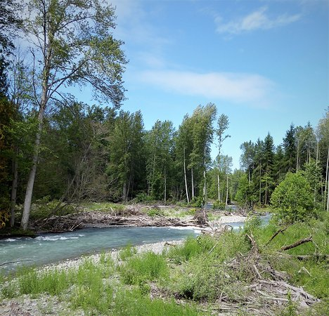 Sequim, WA: Dungeness River