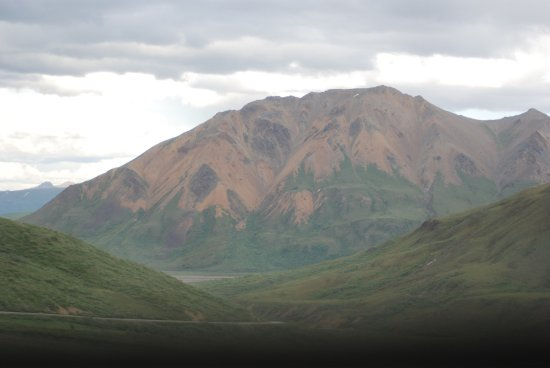 Denali Visitor Center: photo6.jpg