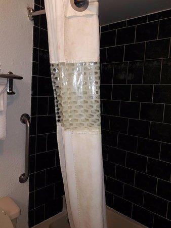 แฟรงกลิน, โอไฮโอ: disgusting filthy shower curtain not so white more yellowish with lots of dirty spots
