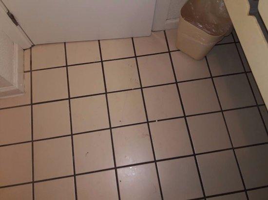 แฟรงกลิน, โอไฮโอ: filthy bathroom floor