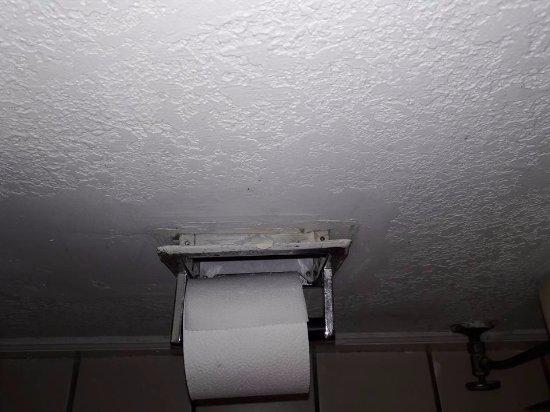 แฟรงกลิน, โอไฮโอ: this kept falling out of the wall also had little roaches come out every time you move it