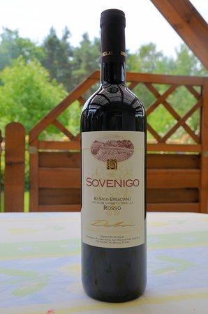 Puegnago sul Garda, İtalya: Rotwein