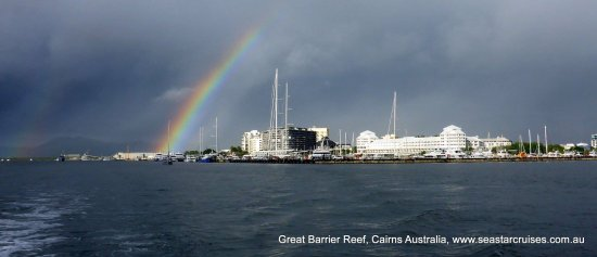Seastar Cruises Reef Day Trips: The weather wasn't exactly in our favour however this beauty came out to sparkle