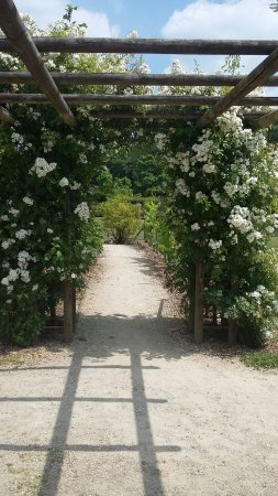 Fosses-la-Ville, Belgia: Jardin magnifique