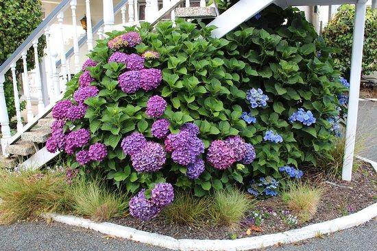 Union Victoria Motel Foto