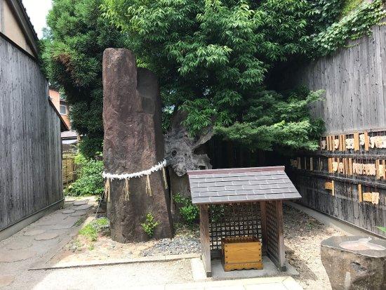 ゲゲゲの妖怪楽園, photo1.jpg