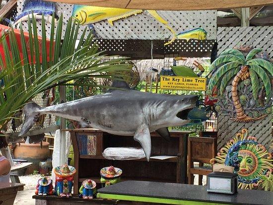 The Key Lime Cafe: photo4.jpg
