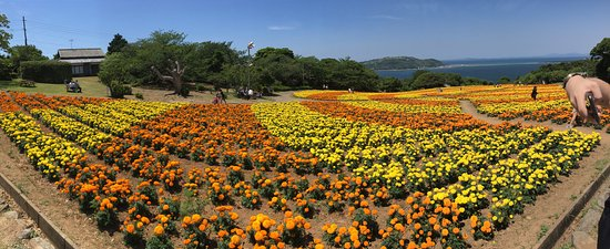 Nokonoshima Island: another view of the park