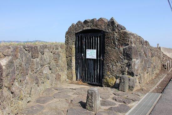 Daikon Island