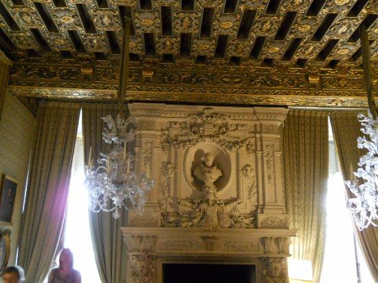 Brissac-Quince, France: Haut plafond décoré or de la salle des gardes.