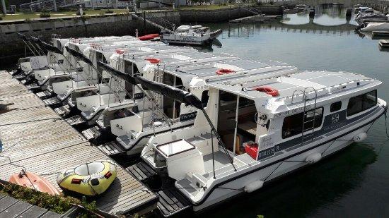 Knysna Houseboats - Day Charters: IMG-20170331-WA0000_large.jpg