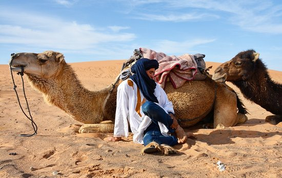 Marrakech-Tensift-El Haouz Region, Marocko: Our Camel ride in Merzouga desert