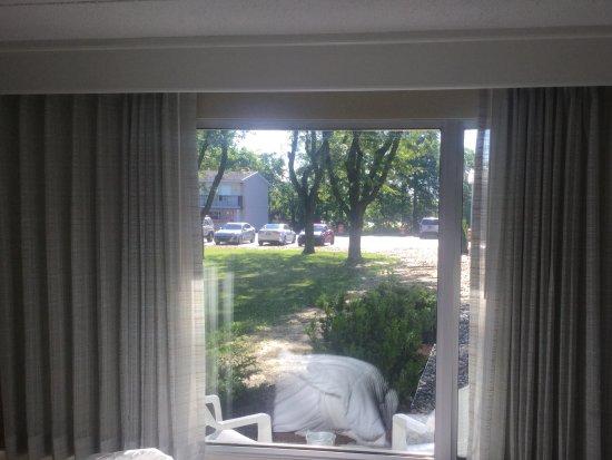 Birch Run, MI: Back window view