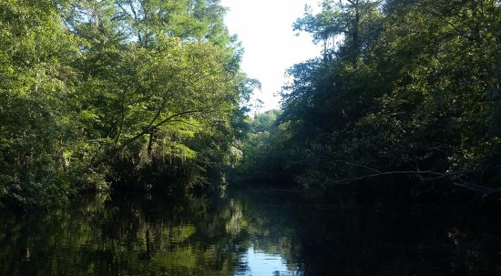 Adel, GA: The Little River