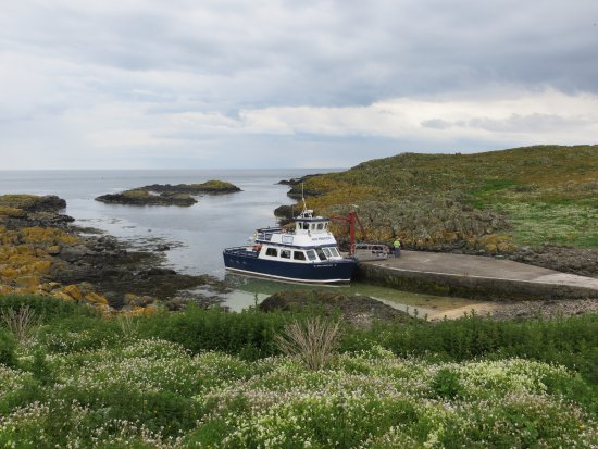 "Anstruther, UK: The ""May Princess"" at Kirkhaven on the Isle of May."
