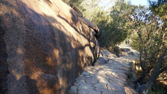 Coles Bay, Australia: 登山途中の道