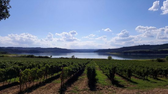 Montefalco, Italia: Walking, Cycling and Horse-riding through the vineyards