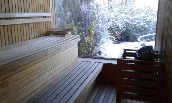 Sol Arrayan Hotel & Spa: sauna con vista al lago