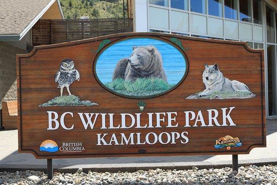 Kamloops, Canadá: photo6.jpg
