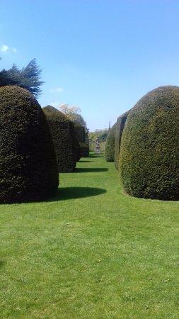 Daventry, UK: Garden