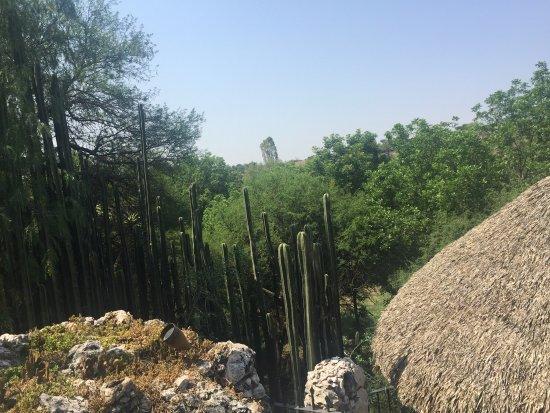 El Santuario, Mexico: photo0.jpg