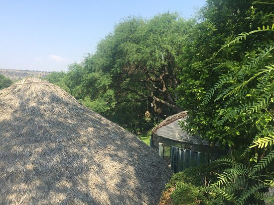 El Santuario, México: photo1.jpg