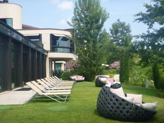 Serralunga d'Alba, Italien: Outdoor area by the pool