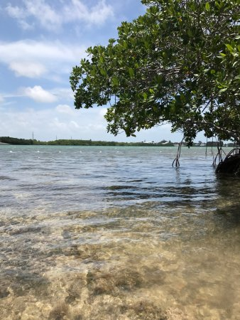 Sugarloaf, Φλόριντα: Perfect Corner spot on the Beach