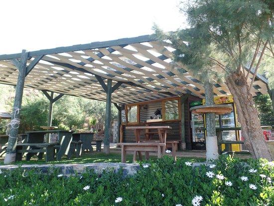 Plakias, Grecia: bar