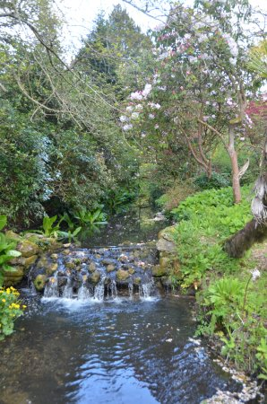 Cerne Abbas, UK: Many water features.