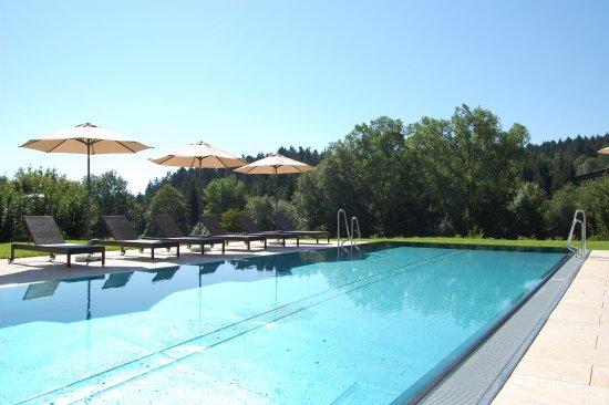 Lauterbad, Deutschland: Outdoor Infinity Pool
