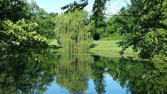 Woodland Mound Park