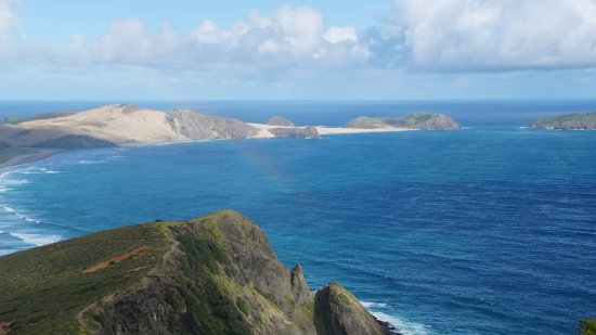 Nordøya, New Zealand: Spot for the shy rainbow