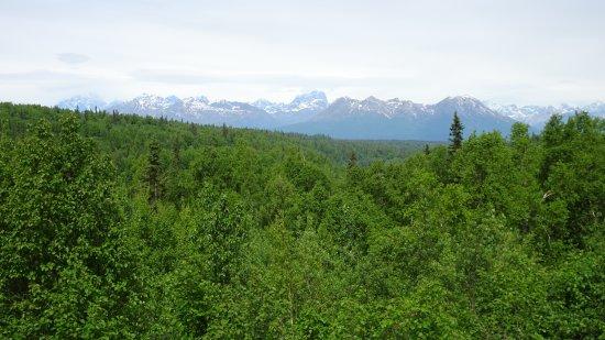 Trapper Creek Photo