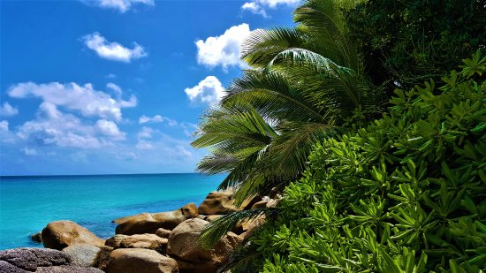Anse Georgette: panoramica