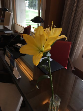 The Oberoi, Gurgaon: Flowers in room