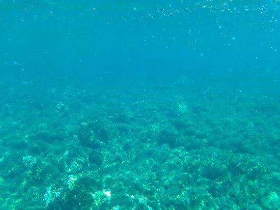 Nijar, Spanien: snorkel