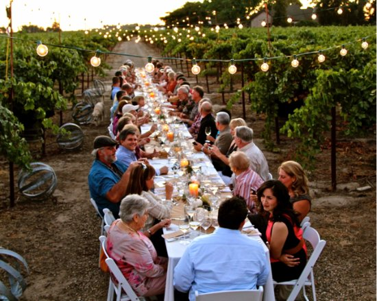 Lodi, CA: Dinner in the Vineyard