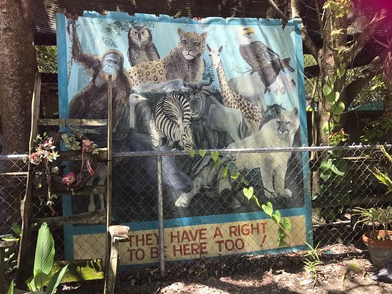 Octagon Wildlife Sanctuary And Rehabilitation Center: photo0.jpg