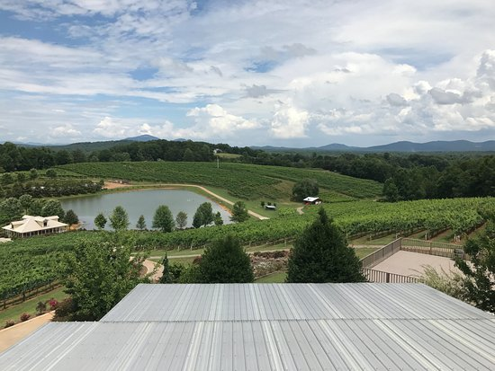 Dahlonega, GA: Gorgeous view from the deck