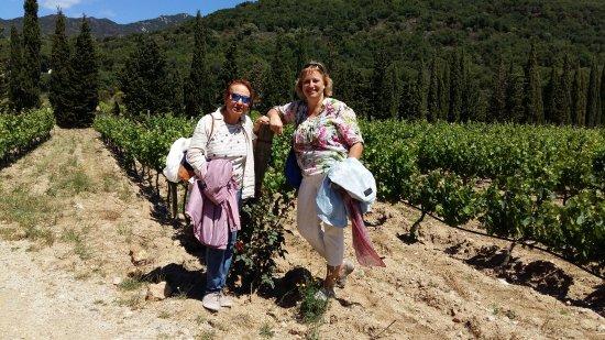 Cantallops, Spanyol: Bon celler familiar al Emporda