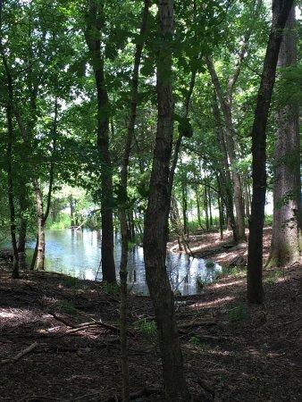 Hermitage, TN: photo0.jpg