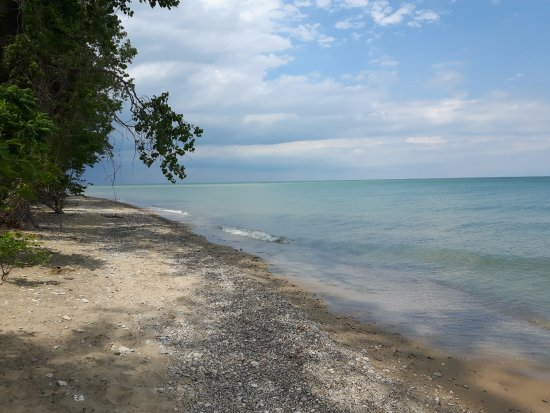 Lighthouse Point Provincial Nature Reserve : Beautiful beach