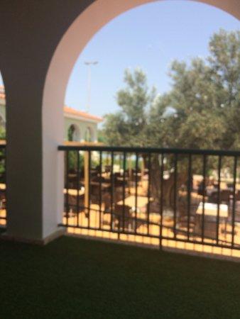 Terraza Exterior Con Olivo Central Picture Of Club De