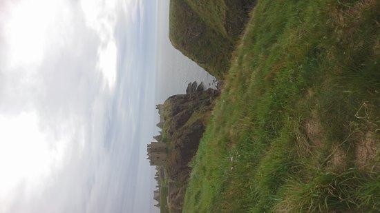 Stonehaven, UK: DSC_1055_large.jpg