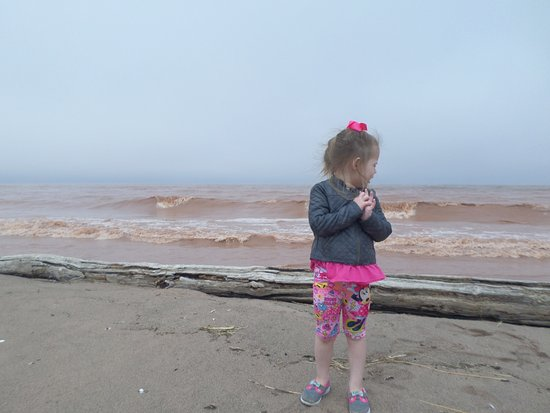 Superior, WI: Beach on a windy day