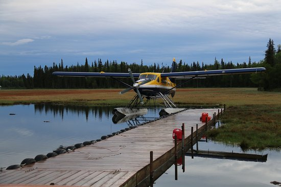 Soldotna, AK: Another great outing recommendation from Leslie ... off to see the bears and do some fishing