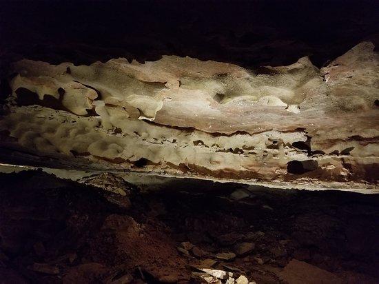Wind Cave National Park, SD: 20170623_141315_large.jpg