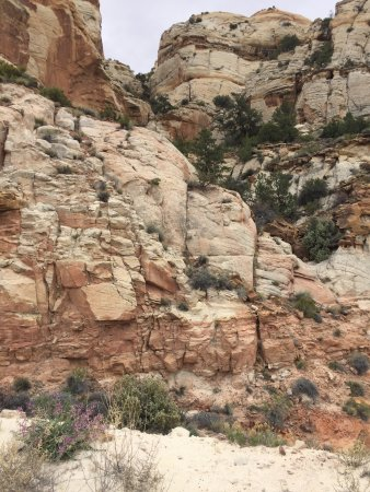 Boulder, Γιούτα:  The Hogback - cut through the mountainside