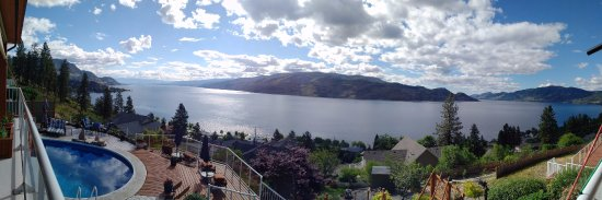 Okanagan Oasis B&B: View from the pool